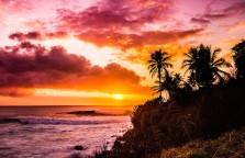 AlohaSunrise