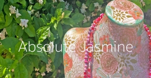 Absolute Jasmine Necklace Series by Jenelle Aubade